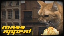 Run The Jewels 'Oh My Darling (Don't Meow)' music video