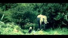 Lissie 'Everywhere I Go' music video