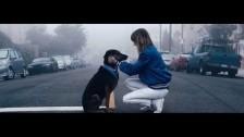 The Mynabirds 'Believer' music video
