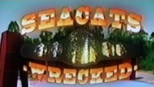 Seacats 'Wrecked' music video