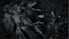 Gary Numan 'The Fall' music video