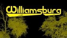 Bridges and Powerlines 'Williamsburg' music video