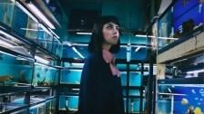 Milk & Bone 'Coconut Water' music video