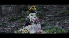 Julianna Barwick 'One Half' music video