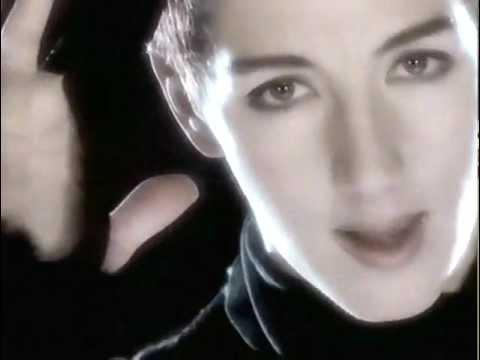 Stereosexual mecano video original