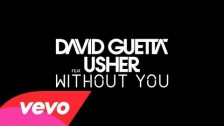 David Guetta 'Without You' music video