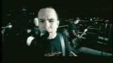 Millencolin 'Penguins And Polar Bears' music video
