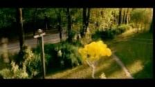 Smiley 'Preocupat cu gura ta' music video