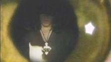 Danzig 'Devil's Plaything' music video