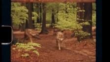 VUM 'Red Flag' music video