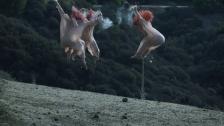 The Acid 'Basic Instinct' music video
