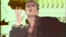 Baltimora 'Tarzan Boy' music video