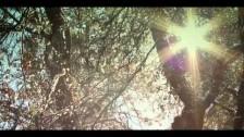 Brianna Lea Pruett 'Shine For You' music video