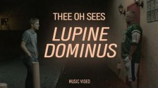 Thee Oh Sees 'Lupine Dominus' music video