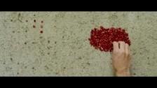 Quilt 'Padova' music video