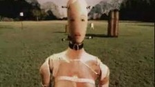 Blonde Redhead 'Equus' music video