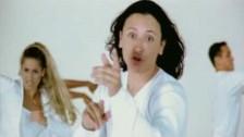 Elvis Crespo 'Pintame' music video