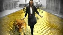 Jazmine Sullivan 'Lions, Tigers & Bears' music video