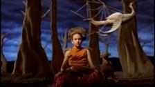 Dishwalla 'Give' music video