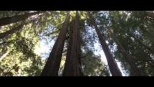 Pixel Fix 'Fall' music video