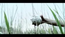iamamiwhoami 't' music video