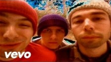 Beastie Boys 'So What Cha Want' music video
