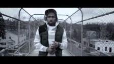 MaLLy & Sundance Kid 'The Renaissance' music video