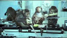 Basement Jaxx 'Where's Your Head At?' music video