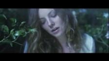 Broken Social Scene 'Sweetest Kill' music video