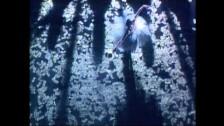 Alphaville 'Dance With Me' music video