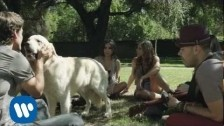 Jesse & Joy 'Con Quien Se Queda El Perro?' music video