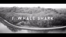 Eyjafjöll 'I, Whale Shark' music video