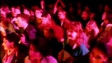 Prefab Sprout 'Golden Calf' music video