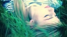 Colaars 'Black Fox' music video