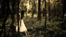 The Paper Kites 'Bloom' music video
