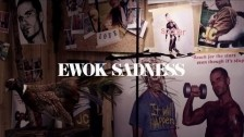 Marijuana Deathsquads 'Ewok Sadness' music video