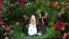 Bad Wolf 'Drowning Beautiful' music video