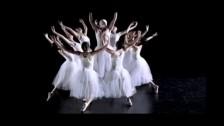 Antony & The Johnsons 'Cripple and the Starfish' music video