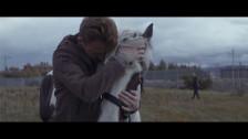 Lilla Vargen 'Why Wait' music video