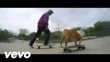 Dinosaur Jr. 'Tiny' music video