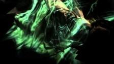 Paul Weller 'Dragonfly' music video