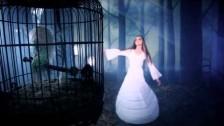 Stevie Nicks 'Secret Love' music video