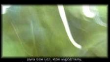 Fluxus 'Nessuno si accorge di niente' music video