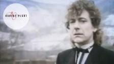 Robert Plant 'Little By Little' music video