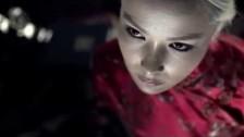 The Church 'Pride before a Fall' music video