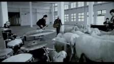 Negramaro 'Come sempre' music video