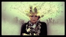 The Joy Formidable 'Cholla' music video