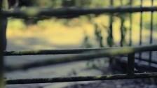 Kensington 'Youth' music video