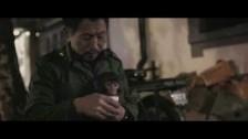 Bonaparte 'Into The Wild' music video