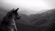 The Joy Formidable 'Wolf's Law' music video